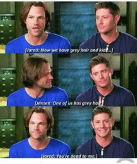 dead to me: Jared: Now we have grey hair and kids.  Jensen: One of us has grey ha  ared: You're dead to me