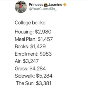 Be Like, Books, and College: Jasmine  @YourCutestSin_  Princess  College be like  Housing: $2,980  Meal Plan: $1,457  Books: $1,429  Enrollment: $983  Air: $3,247  Grass: $4,284  Sidewalk: $5,284  The Sun: $3,381 It do be like that