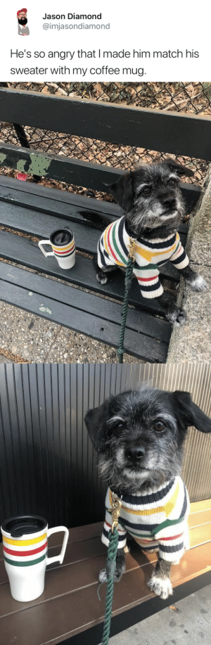 Target, Tumblr, and Twitter: Jason Diamond  @imjasondiamond  He's so angry that I made him match his  sweater with my coffee mug. tastefullyoffensive:  Who wore it better? (via imjasondiamond)