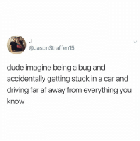 Af, Driving, and Dude: @JasonStraffen15  dude imagine being a bug and  accidentally getting stuck in a car and  driving far af away from everything you  know Post 1321: y the hELL arent u following @kalesaladquotes yet