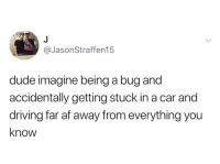 Af, Driving, and Dude: @JasonStraffen15  dude imagine being a bug and  accidentally getting stuck in a car and  driving far af away from everything you  know I'd love to be that bug right now.