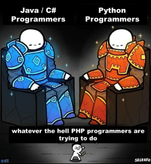 Are you sure?: Java / C#  Python  Programmers  Programmers  +  +  whatever the hell PHP programmers are  trying to do  SRGRAFO  Are you sure?