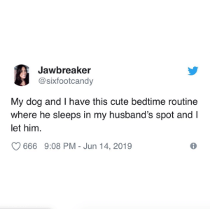 Life goals. Win, win, win.Tw @sixfootcandy: Jawbreaker  @sixfootcandy  My dog and I have this cute bedtime routine  where he sleeps in my husband's spot and I  let him  666 9:08 PM - Jun 14, 2019 Life goals. Win, win, win.Tw @sixfootcandy