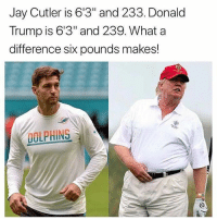 """What a difference!: Jay Cutler is 6'3"""" and 233. Donald  Trump is 6'3"""" and 239. What a  difference six pounds makes!  DOLPHINS What a difference!"""