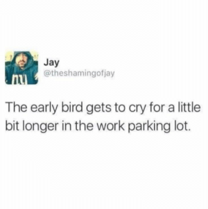 Jay, Memes, and Tbh: Jay  @theshamingofjay  The early bird gets to cry for a little  bit longer in the work parking lot. Must be nice tbh