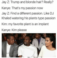 DJ Khaled, Jay, and Jay Z: Jay Z: Trump and blonde hair? Really?  Kanye: That's my passion now  Jay Z: Find a different passion. Like DJ  Khaled watering his plants type passion  Kim: my favorite plant is an implant  Kanye: Kim please  pop Kanye is really getting fed up of her shit 😂😂😂😂