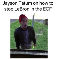 Basketball, Cavs, and Nba: Jayson Tatum on how to  stop LeBron in the ECF  @LUVTheAlbum How the interview actually went 😂 nba nbamemes celtics cavs lebron (Via Nbabelike-Twitter)
