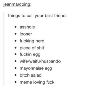 Best Friend, Memes, and Nerd: jeanmarcoing  things to call your best friend:  asshole  looser  fucking nerd  piece of shit  fuckin egg  wife/waifu/husbando  mayonnaise egg  bitch salad  meme loving fuck Honestly burning in actual hell seems more fun than school ~Mattie🌙
