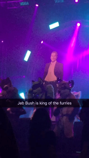 "standard-dingo:  furrypost-generator:  doc-and-mharti: I'm at a furry rave and someone brought out a Jeb Bush cutout?????? Not pictured: the furries chanting ""JEB! JEB! JEB!"" every time the bass drops what timeline am I in  props to OP for taking the L and admitting to being at a furry rave just to bring us this video : Jeb Bush is king of the furries standard-dingo:  furrypost-generator:  doc-and-mharti: I'm at a furry rave and someone brought out a Jeb Bush cutout?????? Not pictured: the furries chanting ""JEB! JEB! JEB!"" every time the bass drops what timeline am I in  props to OP for taking the L and admitting to being at a furry rave just to bring us this video"