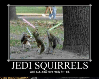 very demotivational: JEDI SQUIRRELS  Well at...now were really f*** ed  VERY DEMOTIVATIONAL.com
