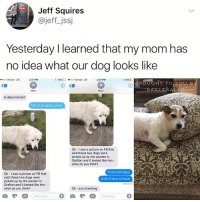 Dogs, Memes, and Saw: Jeff Squires  @jeffjss  Yesterday I learned that my mom has  no idea what our dog looks like  00 Verizon LTE  2-27 PM  18% C-  ..000 Verizon  LTE  2:27 PM  EROUGHT TO  KALESALAD  Mom  Mom  Is dewy home?  ldk I'm at guitar center  Ok - I saw a picture on FB that  said these two dogs were  picked up by the warden in  Grafton and it looked like him-  what do you think?  That's not duey  Ok I saw a picture on FB that  said these two dogs were  picked up by the warden in  Grafton and it looked like him-  what do you think?  DUEYS face is brown  Delivered  Ok -just checking  Message  Message  0 Ok - just checking