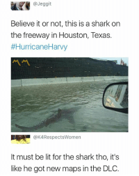 New DLC maps 🦈: @Jeggit  Believe it or not, this is a shark on  the freeway in Houston, Texas.  #HurricaneHarvy  @K4RespectsWomen  It must be lit for the shark tho, it's  like he got new maps in the DLO. New DLC maps 🦈