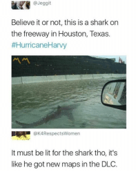 Lit, Shark, and Houston: @Jeggit  Believe it or not, this is a shark on  the freeway in Houston, Texas.  #HurricaneHarvy  @K4RespectsWomen  It must be lit for the shark tho, it's  like he got new maps in the DLC.