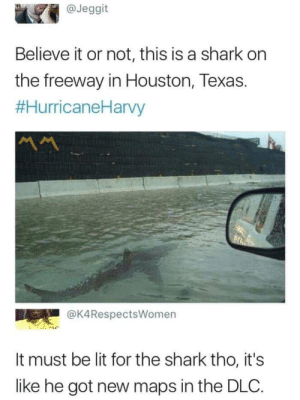 FREE LIT DLC🔥 by Labarski MORE MEMES: @Jeggit  Believe it or not, this is a shark on  the freeway in Houston, Texas.  #HurricaneHarvy  @K4RespectsWomen  It must be lit for the shark tho, it's  like he got new maps in the DLC. FREE LIT DLC🔥 by Labarski MORE MEMES
