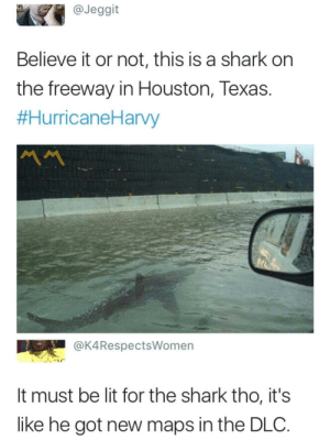 EA presents Baby Shark: @Jeggit  Believe it or not, this is a shark on  the freeway in Houston, Texas.  #HurricaneHarvy  MM  @K4RespectsWomen  It must be lit for the shark tho, it's  like he got new maps in the DLC. EA presents Baby Shark