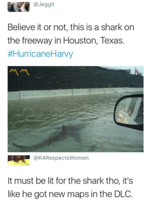 EA presents Baby Shark via /r/memes https://ift.tt/2WjHXrx: @Jeggit  Believe it or not, this is a shark on  the freeway in Houston, Texas.  #HurricaneHarvy  MM  @K4RespectsWomen  It must be lit for the shark tho, it's  like he got new maps in the DLC. EA presents Baby Shark via /r/memes https://ift.tt/2WjHXrx