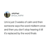 midterm: JellyPapi  @Huss_AMPM  Uni is just 3 weeks of calm and then  someone says the word midterm once  and then you don't stop hearing it till  it's replaced by the word finals