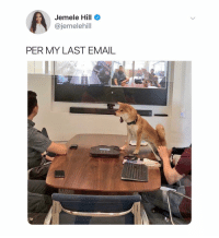 Cute, Email, and Dank Memes: Jemele Hill  @jemelehill  PER MY LAST EMAIL This cute little doggo is @ohayo_kuma and it is very adorable
