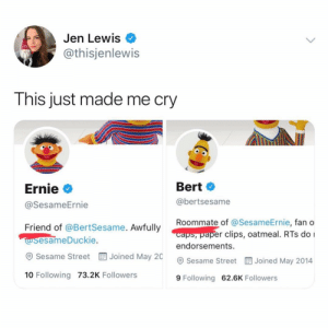 Memes, Roommate, and Sesame Street: Jen Lewis  @thisjenlewis  This just made me cry  Ernie  @SesameErnie  Bert  @bertsesame  Roommate of @Ses  caps, paper clips, oatmeal. RTs do I  endorsements.  ameErnie, fan o  Friend of @BertSesame. Awfully  esameDuckie.  esame Street EE Joined May 20  Sesame Street Joined May 2014  10 Following 73.2K Followers  9 Following 62.6K Followers I always feel weird posting full-on tweet screenshots on here but I need everyone to see this