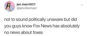 News, Fox News, and Fox: jen merritt!!  @jennifermerr  not to sound politically unaware but did  you guys know Fox News has absolutely  no news about foxes I didn't know that!