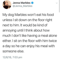 "Being Alone, Food, and Jenna Marbles: Jenna Marbles  @Jenna_Marbles  My dog Marbles won't eat his food  unless l sit down on the floor right  next to him. It would be kind of  annoying until I think about hovw  much I don't like having a meal alone  either. I sit on the floor with him twice  a day so he can enjoy his meal with  someone else.  12/6/18, 7:03 pm <p>the most wholesome interaction via /r/wholesomememes <a href=""https://ift.tt/2l146c6"">https://ift.tt/2l146c6</a></p>"