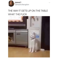 Memes, Fuck, and 🤖: jennao  @implicitlangdon  THE WAY IT GETS UP ON THE TABLE  WHAT THE FUCK I want it