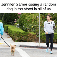 Really though.: Jennifer Garner seeing a random  dog in the street is all of us  SHIN Really though.