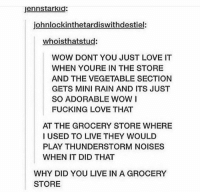 Fucking, Love, and Memes: jennstarkid:  johnlockinthetardiswithdestiel:  whoisthatstud:  WOW DONT YOU JUST LOVE IT  WHEN YOURE IN THE STORE  AND THE VEGETABLE SECTION  GETS MINI RAIN AND ITS JUST  SO ADORABLE WOW I  FUCKING LOVE THAT  AT THE GROCERY STORE WHERE  I USED TO LIVE THEY WOULD  PLAY THUNDERSTORM NOISES  WHEN IT DID THAT  WHY DID YOU LIVE IN A GROCERY  STORE ?? https://t.co/eME1MYWxRk