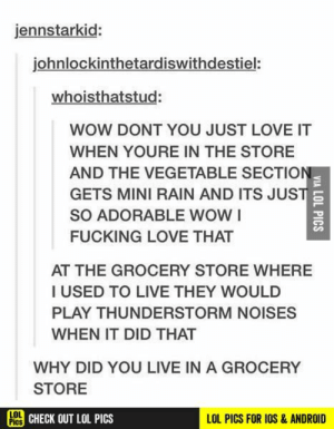 Android, Fucking, and Funny: jennstarkid:  johnlockinthetardiswithdestiel:  whoisthatstud:  WOW DONT YOU JUST LOVE IT  WHEN YOURE IN THE STORE  AND THE VEGETABLE SECTION  GETS MINI RAIN AND ITS JUST  SO ADORABLE WOWI  FUCKING LOVE THAT  AT THE GROCERY STORE WHERE  I USED TO LIVE THEY WOULD  PLAY THUNDERSTORM NOISES  WHEN IT DID THAT  WHY DID YOU LIVE IN A GROCERY  STORE  LOI  He CHECK OUT LOL PICS  LOL PICS FOR IOS& ANDROID  VIA LOL PICS Because reasons funny pics, funny gifs, funny videos, funny memes, funny jokes. LOL Pics app is for iOS, Android, iPhone, iPod, iPad, Tablet