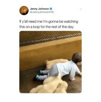 Memes, Twitter, and Tag Someone: Jenny Johnson  @JennyJohnsonHi5  If yall need me lm gonna be watching  this on a loop for the rest of the day. tag someone who needs this 😭 (@jennyjohnsonhi5 on Twitter)