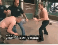 Spring, Kung Fu, and Hillbilly: JERRY  SPRING  GE. KUNG-FU HILLBILLY
