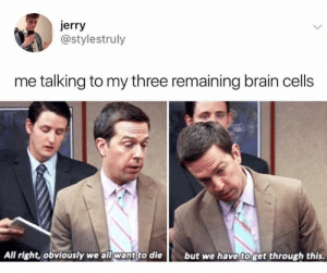 Brain, Three, and All: jerry  @stylestruly  me talking to my three remaining brain cells  All right, obviously we all want to die  but we have toget through this.