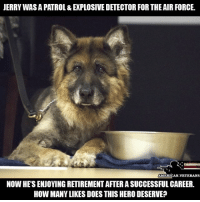 Repost @american.veterans Thanks for your service, hero! Like my post? Check out my friends: @american.veterans @_americafirst_ @the.red.pill @break.the.fake americanmade🇺🇸 patriot patriots americanpatriots politics conservative libertarian patriotic republican usa america americaproud wethepeople republican freedom secondamendment MAGA PresidentTrump alllivesmatter america: JERRY WAS A PATROL & EXPLOSIVE DETECTOR FOR THE AIR FORCE.  AMERICAN.VETERANS  NOW HE'S ENJOYING RETIREMENT AFTER A SUCCESSFUL CAREER.  HOW MANY LIKES DOES THIS HERO DESERVE? Repost @american.veterans Thanks for your service, hero! Like my post? Check out my friends: @american.veterans @_americafirst_ @the.red.pill @break.the.fake americanmade🇺🇸 patriot patriots americanpatriots politics conservative libertarian patriotic republican usa america americaproud wethepeople republican freedom secondamendment MAGA PresidentTrump alllivesmatter america