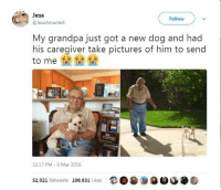 Grandpa throwing dust in my eyes: Jess  @JessAmante4  Follow  My grandpa just got a new dog and had  his caregiver take pictures of him to send  to me  12:17 PM 6 Mar 2016  52,021 Retweets 106,931 Likes  9目 Grandpa throwing dust in my eyes