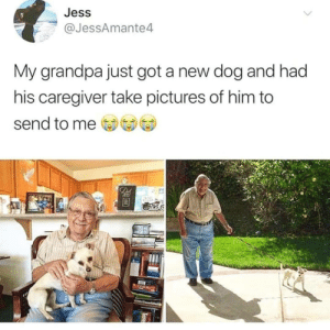 Love, Grandpa, and Pictures: Jess  @JessAmante4  My grandpa just got a new dog and had  his caregiver take pictures of him to  send to me  De Love like this!!