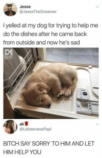 Bitch, Sorry, and Help: Jesse  @JesssTheDreamer  I yelled at my dog for trying to help me  do the dishes after he came back  from outside and now he's sad  DA  NK  all  @LebaenesePapi  BITCH SAY SORRY TO HIM AND LET  HIM HELP YOU