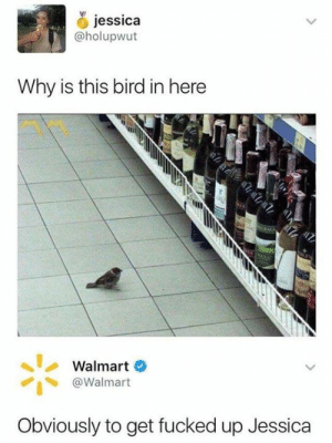 Get Fucked: jessica  @holupwut  Why is this bird in here  Walmart  @Walmart  Obviously to get fucked up Jessica