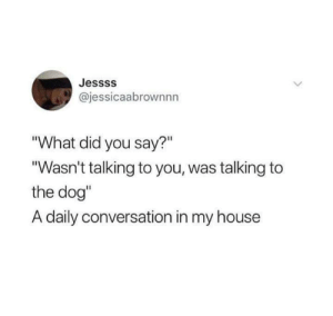 "did-you-say: Jessss  @jessicaabrownnn  ""What did you say?""  ""Wasn't talking to you, was talking to  the dog""  A daily conversation in my house"