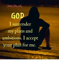 God, Jesus, and Memes: Jesus the ark  GOD  I surrender  my plans and  ambitions. I accept  your plan for me God has something special for you. It bigger and greater than your own plans and ambitions. Gave your heart to him. He loves you.