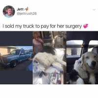 Funny, Her, and Pet: Jett  @jettrush26  I sold my truck to pay for her surgery This is the type of pet owner I will be- I promise @pupwithnojob