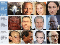 """All I could think about during Infinity War: Jewish phenotypes  THE HAWK-  Usually hazel or  green eyes with  a reptilian gaze.  Often lighter  colored  features. Beak  nose, some  overlap with the  goblin. A lot of  jewish yentas  look like this  THE TROLL  small beady  eyes, somewhat  close together  and odd facial  features.  Sometimes  prominent nose  with a bulbous  tip.  THE GOBLIN-  This is the classic  le happy  merchant"""" hand  rubbing jew  Posterior sloped  forehead, classic  offensive jew  nose, and greasy  smile All I could think about during Infinity War"""