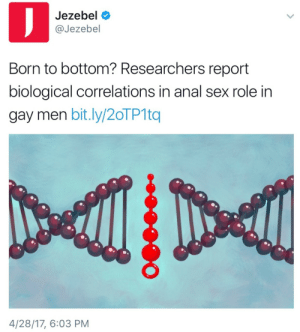 "Anal Sex, Sex, and Tumblr: Jezebel  @Jezebel  Born to bottom? Researchers report  biological correlations in anal sex role in  gay men bit.ly/20TP1tq  4/28/17, 6:03 PM verycooltrash: ethnicjewofficial:  whitegirlsaintshit:  *gets ""born to bottom"" tatted on my buttcheek*  (ABAB) assigned bottom at birth  someone got paid to draw a dna double helix being fucked in half by anal beads"