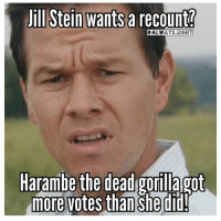 Jill: Jill Stein wants a recount?  ALWAYS RIGH  Harambe the dead gorilla got  more votes than  she did!