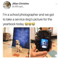 Dank, Dogs, and School: Jillian Christine  @JillEngel  I'm a school photographer and we got  to take a service dog's picture for the  yearbook today