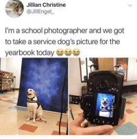 Me_irl: Jillian Christine  JillEngel  I'm a school photographer and we got  to take a service dog's picture for the  yearbook today Me_irl