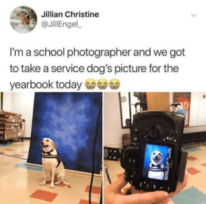 A good boy: Jillian Christine  JillEngel  I'm a school photographer and we got  to take a service dog's picture for the  yearbook today A good boy