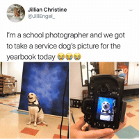 Dogs, Memes, and School: Jillian Christine  @JillEngel  l'm a school photographer and we got  to take a service dog's picture for the  yearbook today Post 1262: y the hell arent You following @kalesaladanimals yet