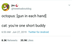me🐙irl: jim  @tweetsaboutdog  octopus: [gun in each hand]  cat: you're one short buddy  6:53 AM Jun 27, 2019 Twitter for Android  35.9K Likes  8.3K Retweets me🐙irl