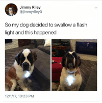 Follow me @x__social_butterfly__x: Jimmy Riley  @jimmyrileyO  So my dog decided to swallow a flash  light and this happened  12/1/17, 10:23 PM Follow me @x__social_butterfly__x