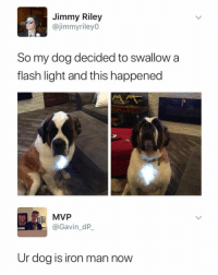 Iron Man, Thathappened, and Flash: Jimmy Riley  @jimmyrileyO  So my dog decided to swallow a  flash light and this happened  MVP  @Gavin_dP  Ur dog is iron man now